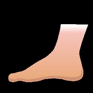 足、アキレス腱